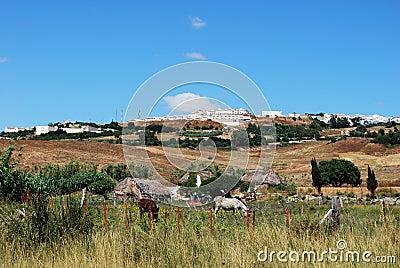Small farm, Medina Sidonia, Spain.