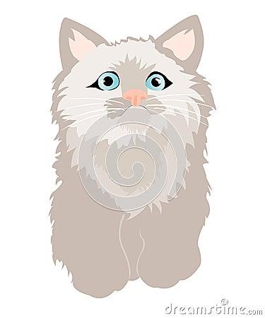 Small feathery kitty