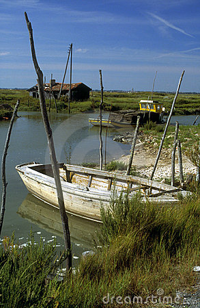 Small fish farming boat