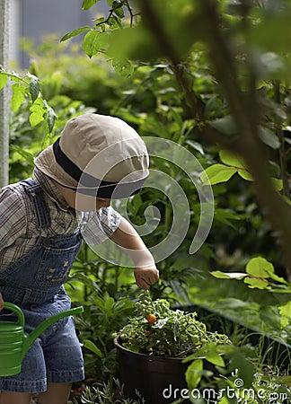 Small gardeners.
