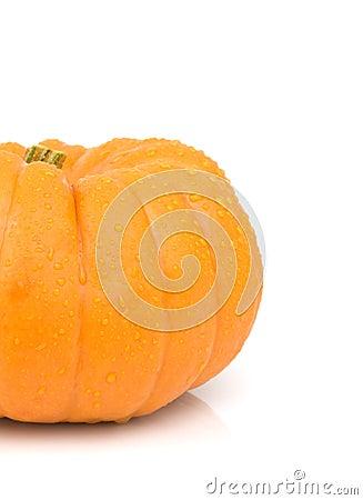 Small gourd pumpkin