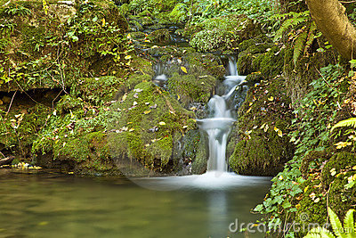 Small Green Waterfall