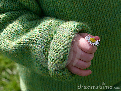 Small hand, small flower