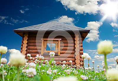 Small house on flowers meadow