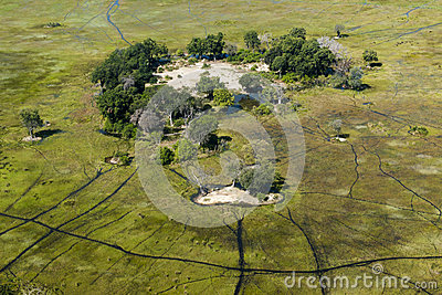 Small island in the Okavango Delta seen from heli