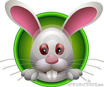 Small lovely rabbit head