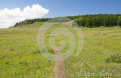 Small Mountain Path