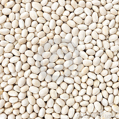 Free Small Navy, Haricot, White Pea, White Kidney Or Cannellini Purga Royalty Free Stock Images - 46485669