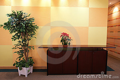 Small plant in office lobby