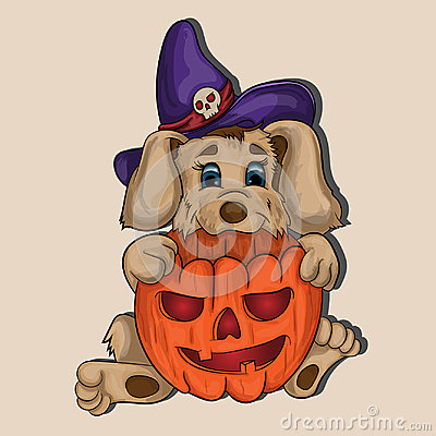 A small puppy is holding a pumpkin in the paws Vector Illustration