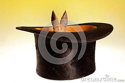 Small rabbit in a magic hat