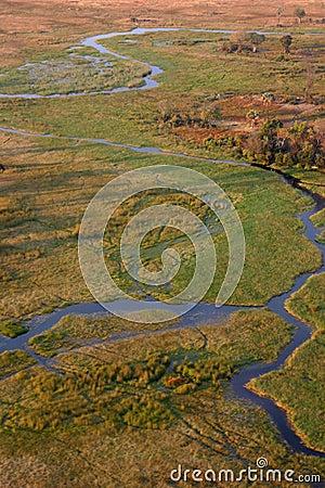 Small river in Okavango delta