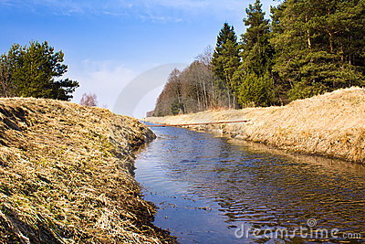 The small river (spring)