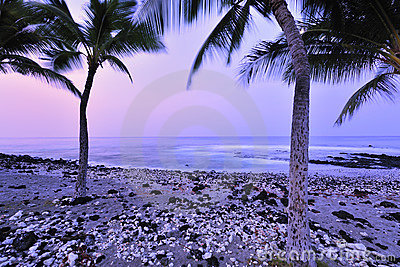 Small Rock Beach Royalty Free Stock Photos - Image: 13003128