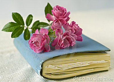 Small roses on a diary
