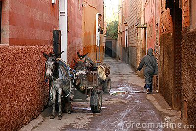 Small street in Marrakech s medina. Morocco