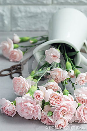 Free Small Tender Pink Carnation Flowers In Enamel Vase On Gray Concrete, Mother& X27;s Day Greeting Card Background, Vertical Stock Images - 94751114