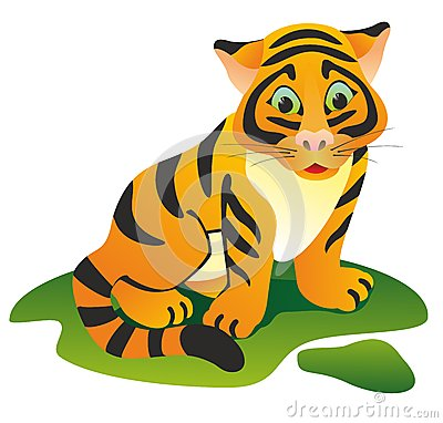 Small tiger on a green lawn