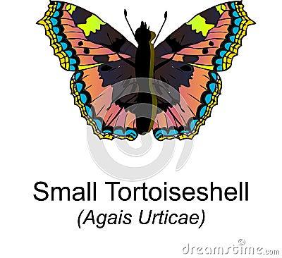 Small Tortoiseshell Butterfy