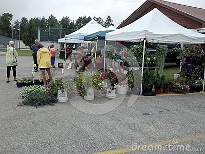 Small town farmers market Editorial Image