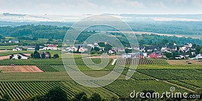 Small village between vineyards