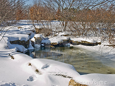 Small water pool in the winter