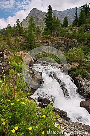 Free Small Waterfall Royalty Free Stock Photo - 545415