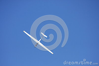 Small white glider Editorial Stock Image
