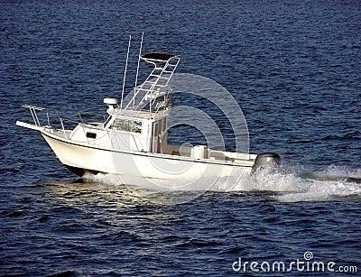 Small White Pleasure Fishing Boat Sailing at Sea