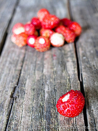 Small wild strawberry