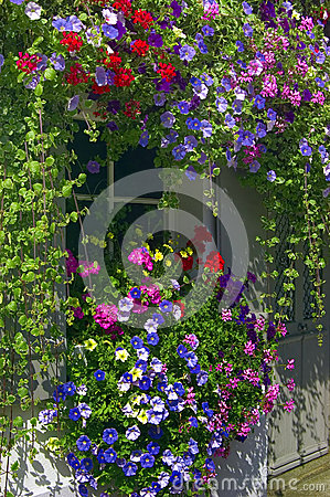 Free Small Window Framed With Colored Blossoms Stock Photography - 27564732