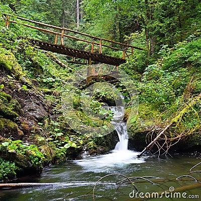 Free Small Wooden Bridge Leading Across A Mountain Creek Stock Image - 70363861
