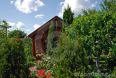Small wooden house and the garden