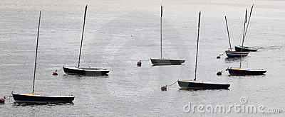 Small yachts on the River Thames. London. UK