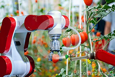 Smart robotic farmers in agriculture futuristic robot automation to work to spray chemical fertilizer Stock Photo
