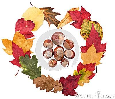 Símbolo da forma do coração feito das folhas de outono