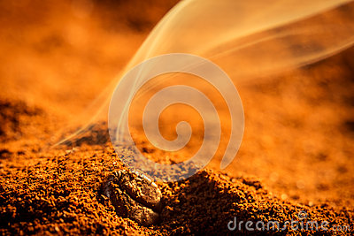 Smell of roasted ground coffee