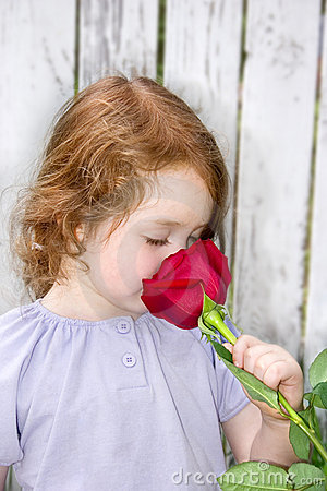 Free Smelling A Rose Royalty Free Stock Image - 2715416