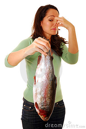 Smelly Fish Royalty Free Stock Images Image 13492499