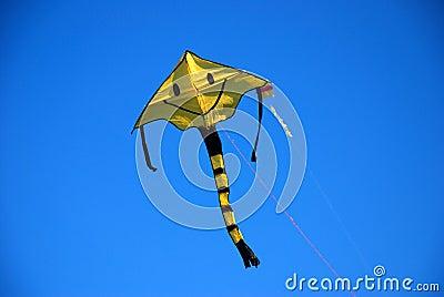 Smile kite