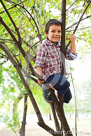 Climbed in a tree