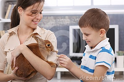 Smiling boy feeding rabbit