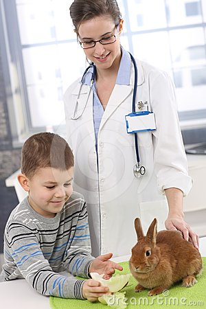 Smiling boy feeding rabbit at pets  clinic