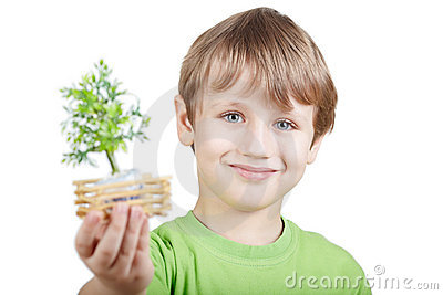 Smiling boy holds little artificial tree
