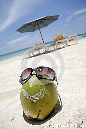Free Smiling Coconut Head Stock Photos - 5606403