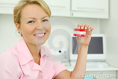 Smiling dentist keeps toy jaw