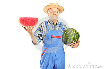 Smiling farmer in dungarees holding a watermelon and slice