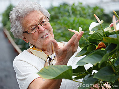 Smiling older woman looking at flowers