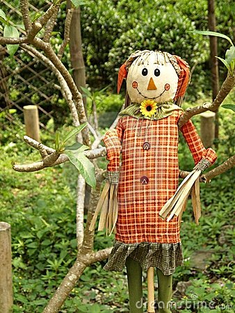 Free Smiling Scarecrow Standing In Green Field Stock Images - 14279804