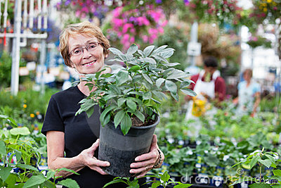 Smiling senior woman holding potted plant
